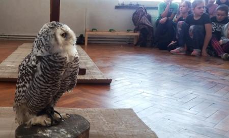 """Spotkanie z lekarzem weterynarii na temat """"Życie i ochrona ptaków drapieżny"""